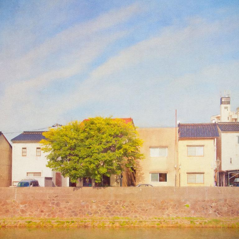 Houses along Asanogawa River